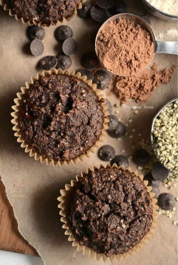 Don't you love it when you can get a good dose of protein and healthy fats to jump start your day?! Paleo Chocolate Hemp Protein Muffins from Forest and Fauna. Just one of the best gluten-free muffin recipes from March Muffin Madness!