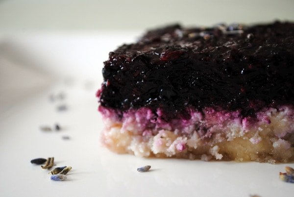 Gluten-Free Raw Lavender Blueberry Bars from Hunter's Lyonesse. One of many fabulous Gluten-Free Mother's Day Brunch Recipes!