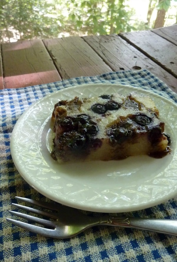 Gluten-Free Blueberry Streusel Coffee Cake from Pikanik Bakery. You're going to want to eat this treat for your breakfast, your afternoon treat, and dessert after dinner. [featured on GlutenFreeEasily.com]