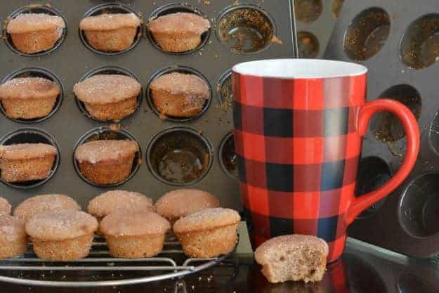 "Gluten-Free Muffins That Taste Like Donuts. ""These gluten-free Muffins That Taste Like Donuts are delicate cake-like mini-muffins dipped in cinnamon-sugar. They remind me of the donut holes my grandmother used to make but they are baked in the oven."""