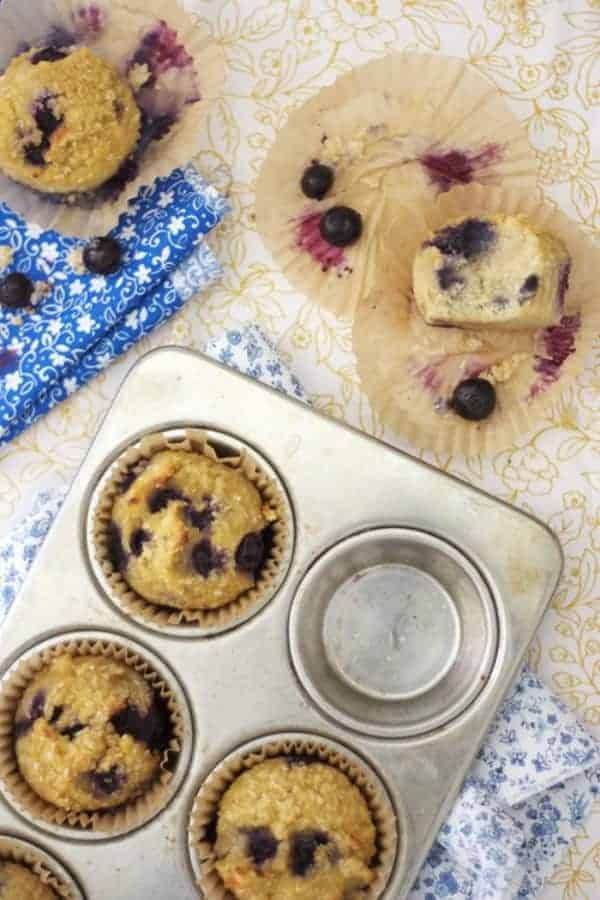 Paleo Shredded Coconut Blueberry Muffins. Amazing texture for starch-free muffins. One of 20 gluten-free muffin recipes featured on gfe for March Muffin Madness.